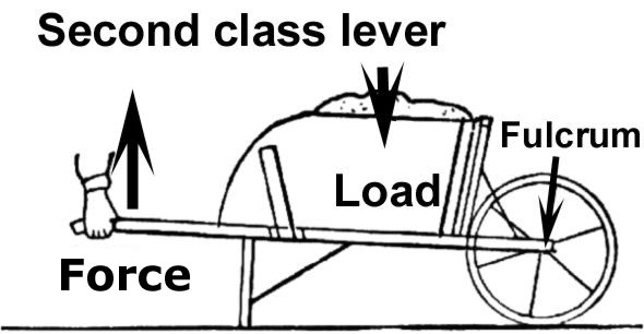 Second Class Lever Example Examples of a Second Class